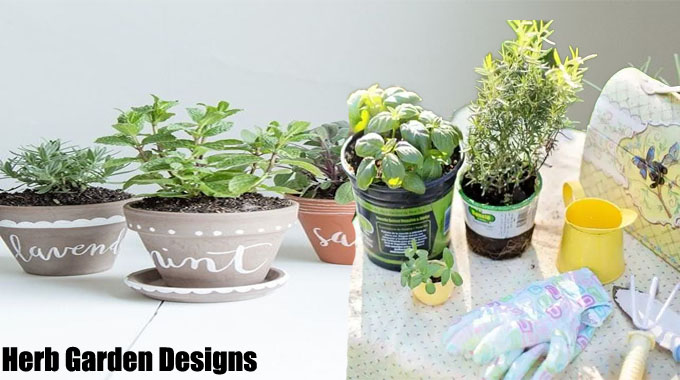 Remarkable Tips on Herb Garden Designs